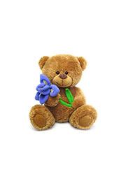 Мяг. игрушка с озвучкой МЕДВЕЖОНОК СЭММИ С ИРИСОМ, 17,5см /58638/
